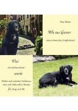 Wie aus Gunter - einem römischen Straßenhund - Vito - der Schmusehund - wurde