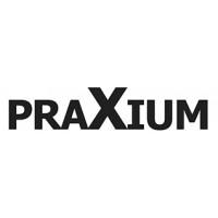 Logo PRAXIUM-Verlag